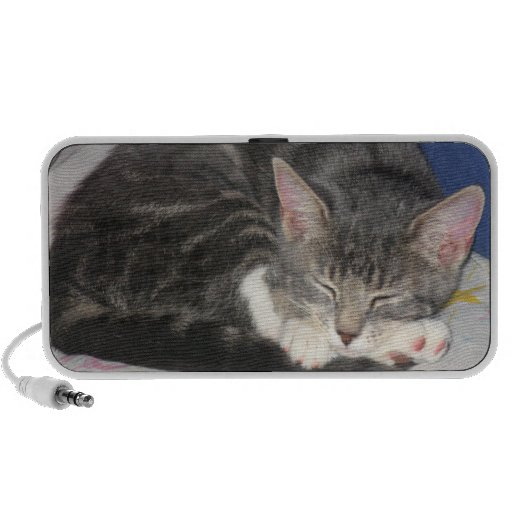 Mittens Kitten Nap Speaker