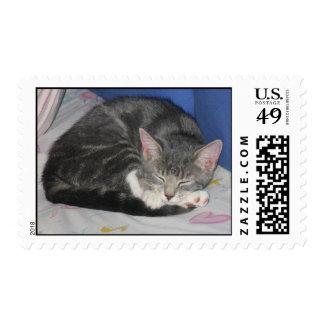 Mittens Kitten Nap Stamp