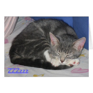 MIttens Kitten Sq Nap Card