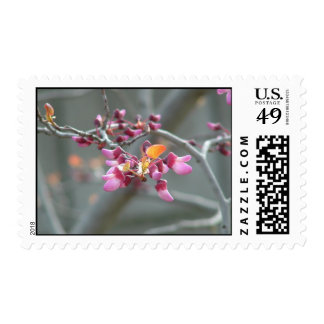 Mittens Postage Stamps