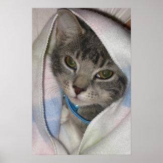 Mittens the Kitten Baby Blanket Print