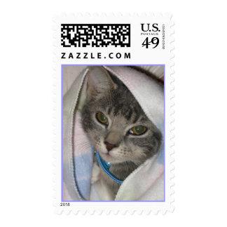 Mittens the Kitten & Baby Blanket Stamp
