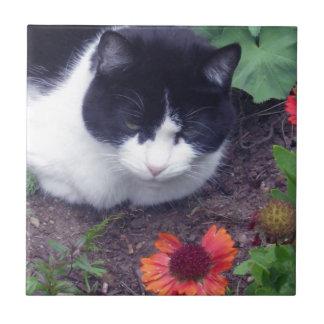 MittzC [cat] Studies a Flower Ceramic Tiles