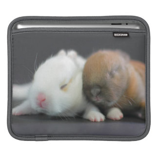 Mix breed of Netherland Dwarf Rabbits Sleeve For iPads
