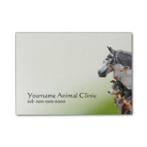 Mixed animals veterinary practice post-it notes