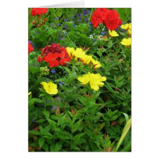 Mixed Blooms Olympia Farmer' s Market Garden Card