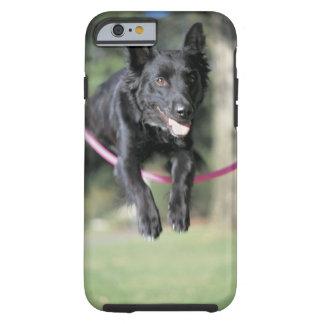 Mixed Border Collie Tough iPhone 6 Case