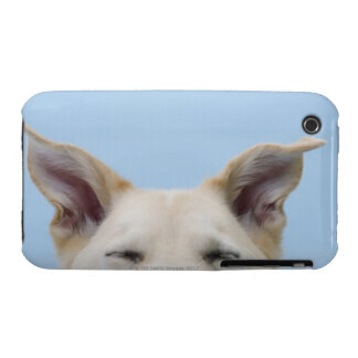 Mixed-breed dog, close-up on head and ears iPhone 3 cover