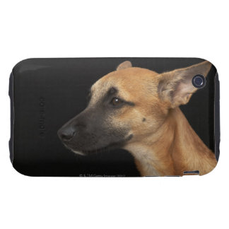 Mixed breed dog looking to the left on black tough iPhone 3 cases