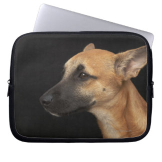 Mixed breed dog looking to the left on black laptop sleeve