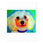 Mixed Breed Dog Postcard