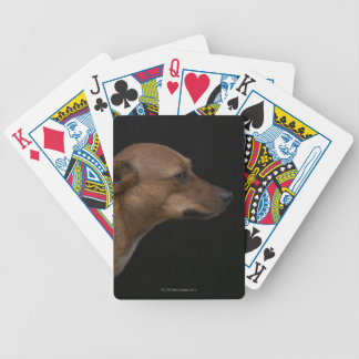 Mixed breed dog profile on black background bicycle playing cards