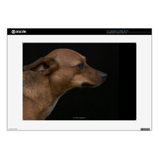"""Mixed breed dog profile on black background decal for 15"""" laptop"""