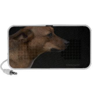 Mixed breed dog profile on black background mini speaker