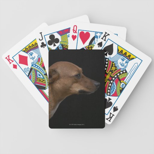 Mixed breed dog profile on black background bicycle poker cards