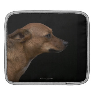 Mixed breed dog profile on black background sleeve for iPads