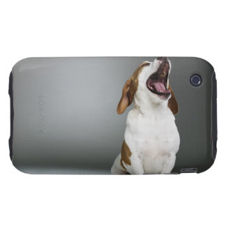 Mixed breed dog yawning iPhone 3 tough cover