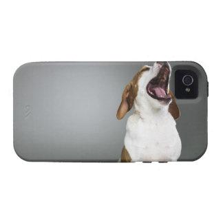 Mixed breed dog yawning vibe iPhone 4 case