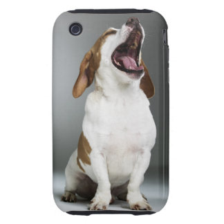 Mixed breed dog yawning, close-up tough iPhone 3 cover