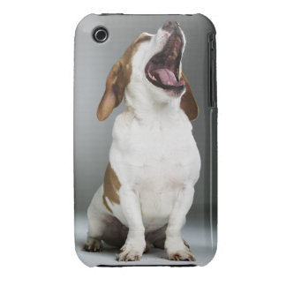 Mixed breed dog yawning, close-up iPhone 3 cover