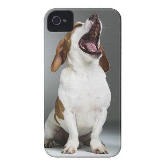 Mixed breed dog yawning, close-up iPhone 4 Case-Mate case