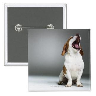 Mixed breed dog yawning pinback button