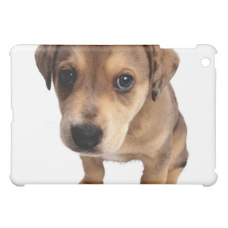 Mixed-Breed Puppy iPad Mini Covers