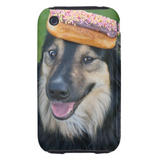 Mixed breed shepherd with donut on head tough iPhone 3 case