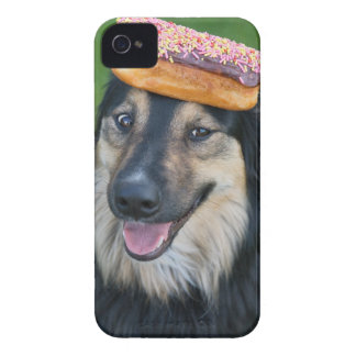 Mixed breed shepherd with donut on head iPhone 4 Case-Mate cases