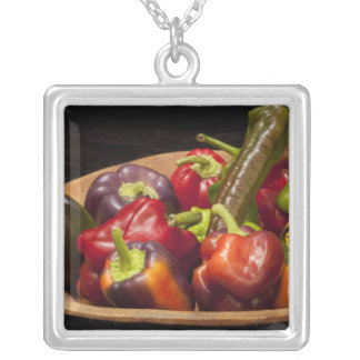 Mixed colors and types of peppers silver plated necklace