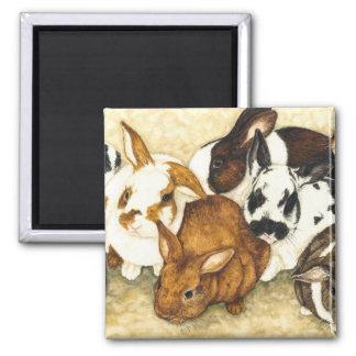 Mixed Company  - Bunny Magnet