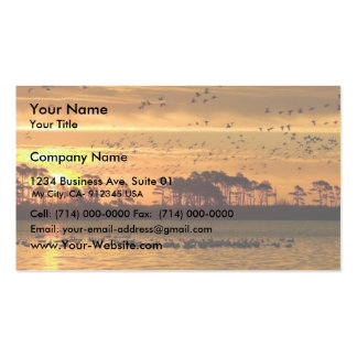 Mixed flock of waterfowl fly at Chinocoteague Business Card