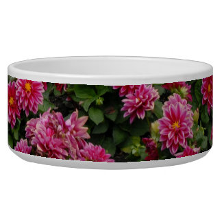 Mixed flowers in flower bed bowl