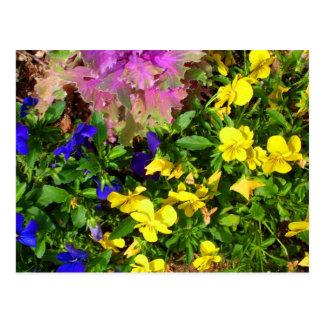 Mixed Flowers Postcard