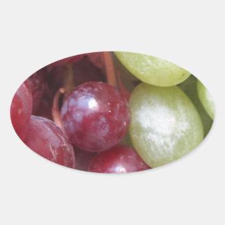 Mixed Grapes Sticker