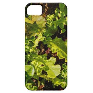 Mixed Greens Organic iPhone 5 Case
