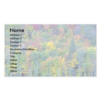 Mixed hardwood forest, Gatineau Park, Quebec, Cana Double-Sided Standard Business Cards (Pack Of 100)