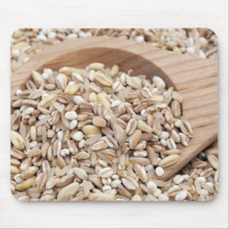 Mixed Healthy Grains Mouse Pad