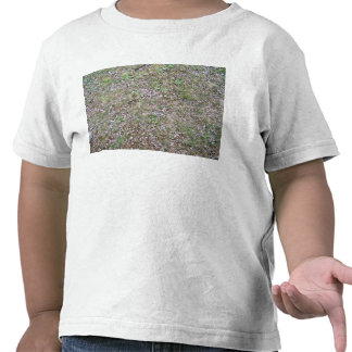 Mixed Leaves in Grass Shirt
