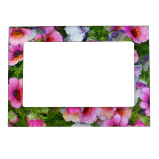 Mixed Nemesia Magnetic Picture Frame