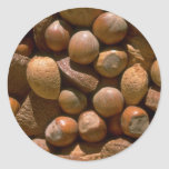 Mixed nuts in shells classic round sticker