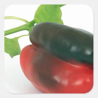 Mixed pepper square sticker