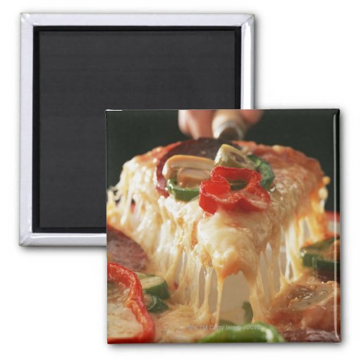 Mixed Pizza 2 Inch Square Magnet