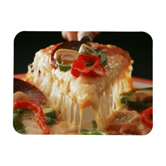 Mixed Pizza Magnet