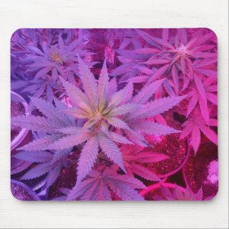MKFMJ Cannabis Plant Mouse Pad