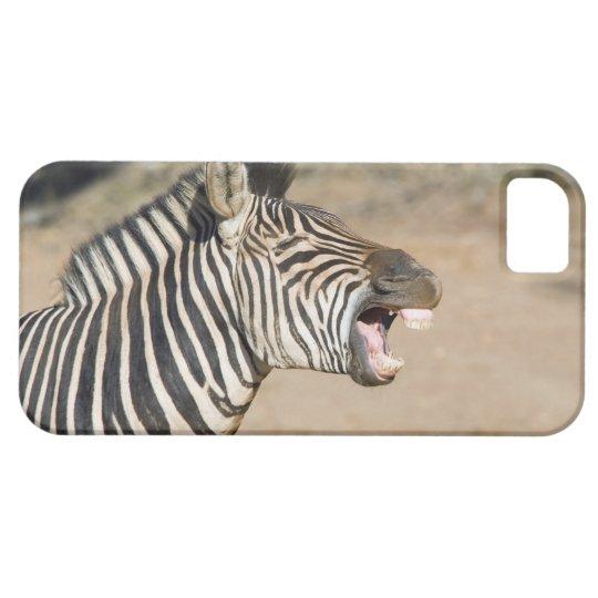 Mkuze Game Reserve, Kwa-Zulu Natal Province, iPhone SE/5/5s Case