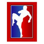 MMA Brizillian Ju Jitso Karate Fighter Postcard