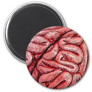 Mmmm BRAINS Magnets