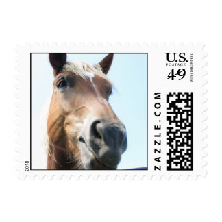 Mmmm hmmmm... postage stamps