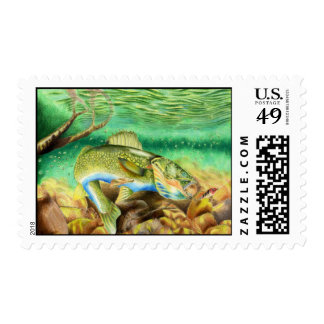 MN Nelson 809 High 2007 Postage
